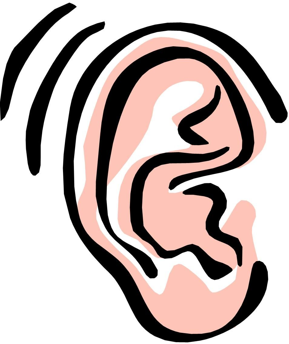 Hearing clipart all ear - 124 transparent clip arts, images ... svg transparent stock