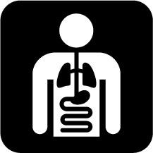 Radiology symbol clipart banner Free Radiology Cliparts, Download Free Clip Art, Free Clip ... banner
