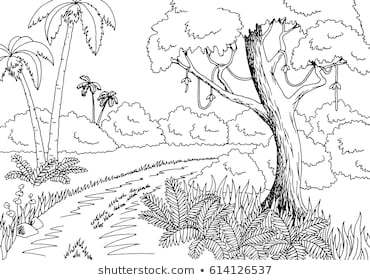 Rainforest clipart black and white 6 » Clipart Portal graphic black and white library