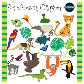 Rainforest Clipart {L.E. Designs} image