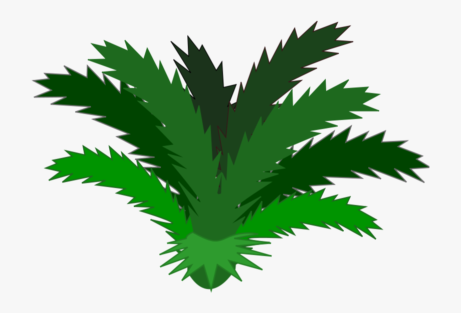 Rainforest leaves clipart picture transparent library Tropical Clipart - Single - Rainforest Plants Png #40071 ... picture transparent library