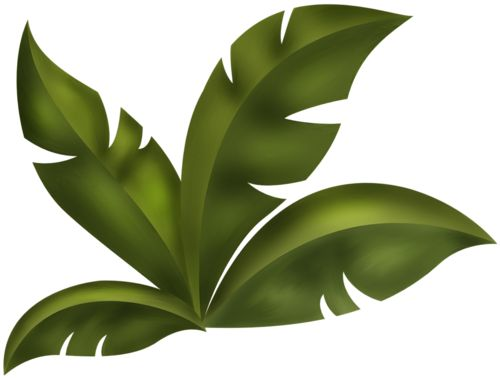 Rainforest leaves clipart svg royalty free download Jungle Leaves Clipart | Free download best Jungle Leaves ... svg royalty free download