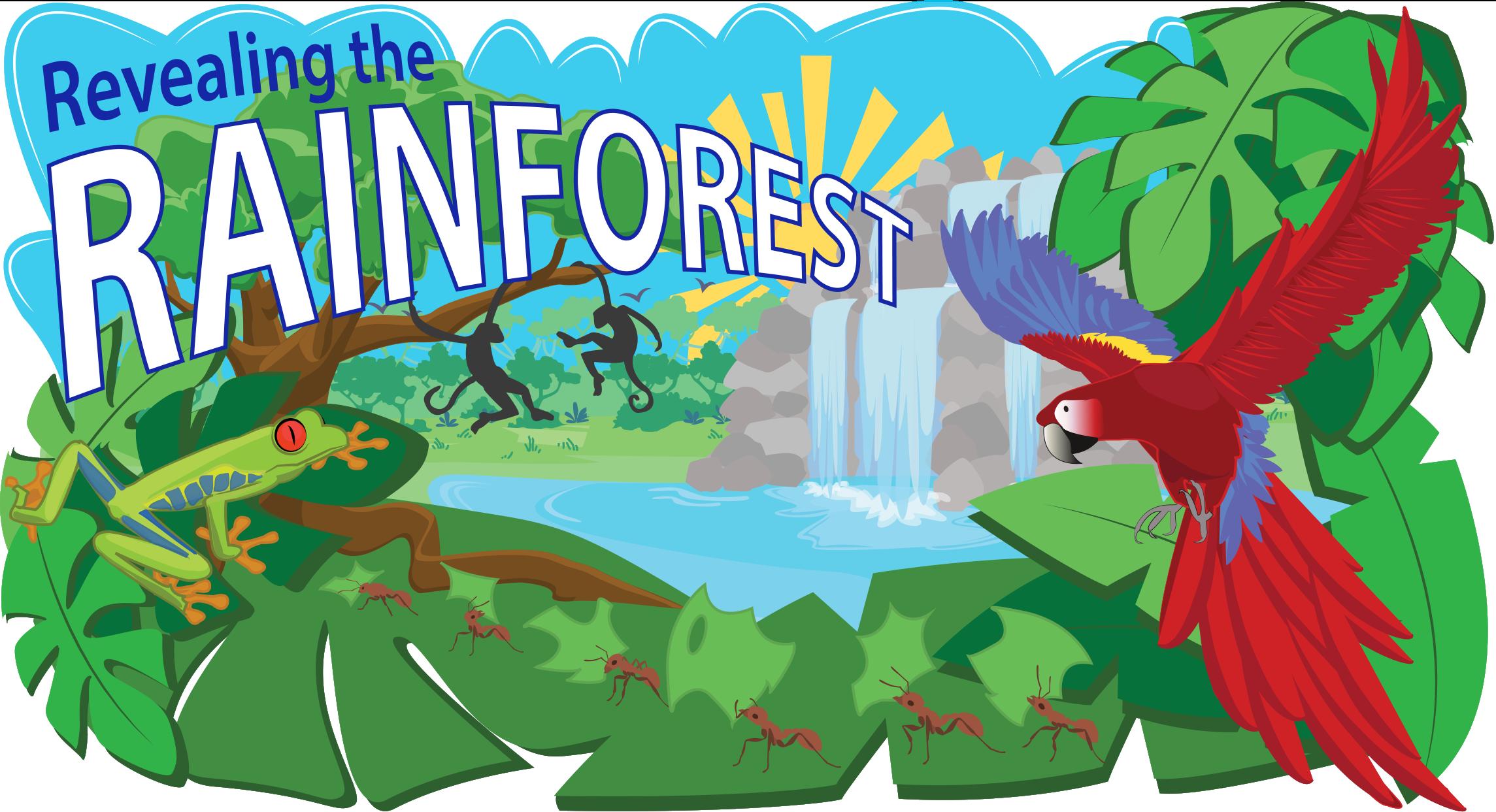 Rainforest sun clipart png transparent Tropical Rainforest Biome   Ask A Biologist png transparent