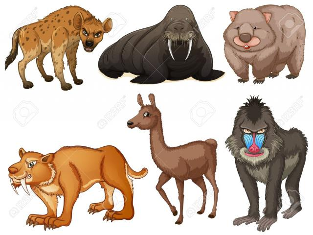 Rare clipart graphic free library Free Rare Clipart platypus, Download Free Clip Art on Owips.com graphic free library