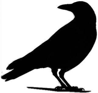 Raven silhouette clipart images gallery for free download ... free library