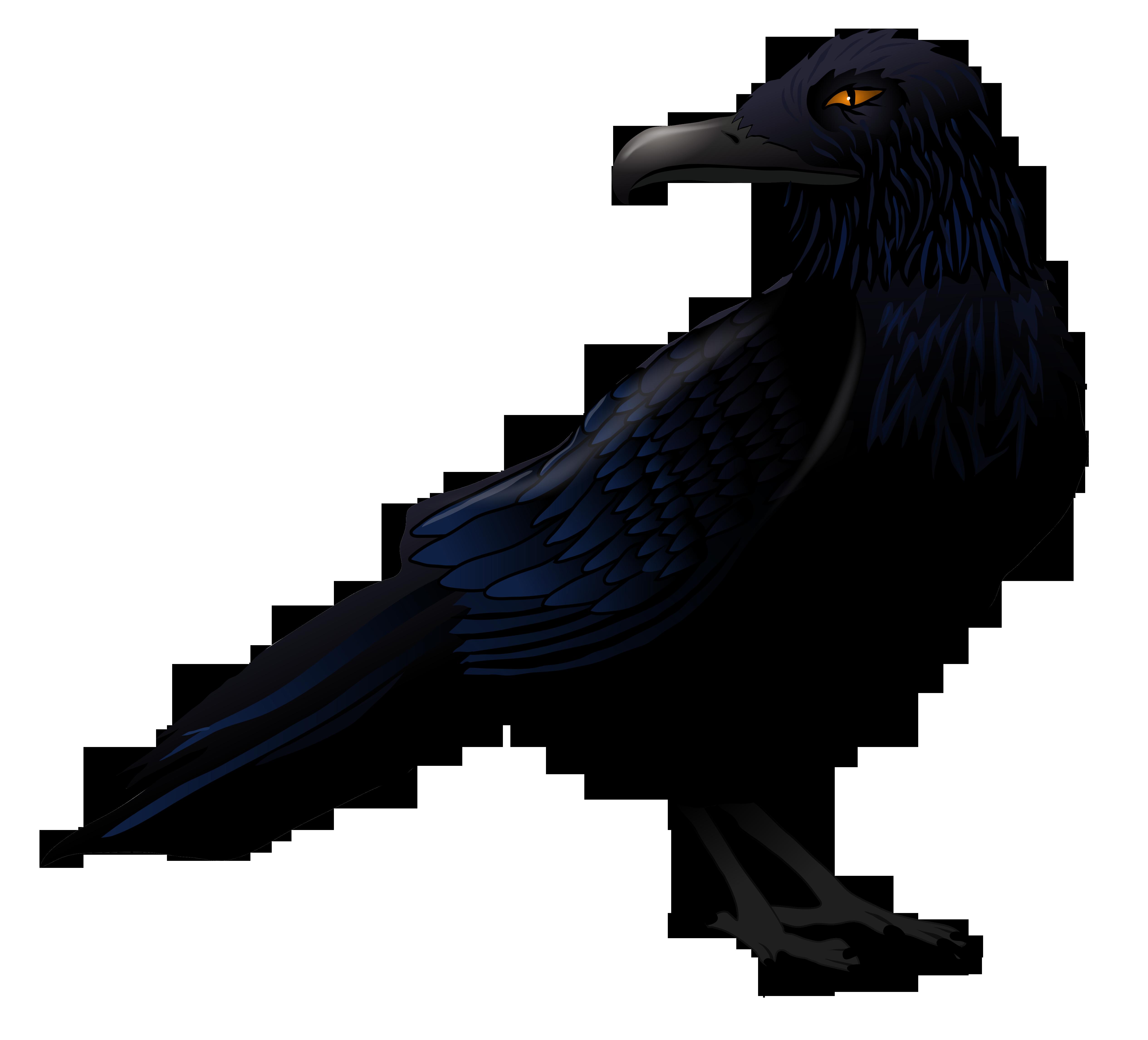 Raven vector clipart download Haunted Raven PNG Vector Clipart | Gallery Yopriceville ... download