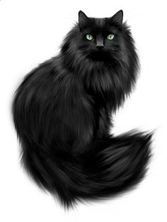 Real cat clipart svg transparent stock Cat Transparent PNG Clipart | gif mačka | Pinterest | Cats, Dibujo ... svg transparent stock
