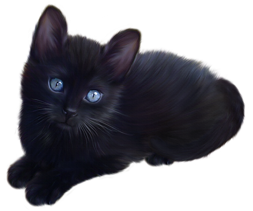 Real cat clipart graphic royalty free library Chat Cat Clipart - Clipart Kid graphic royalty free library