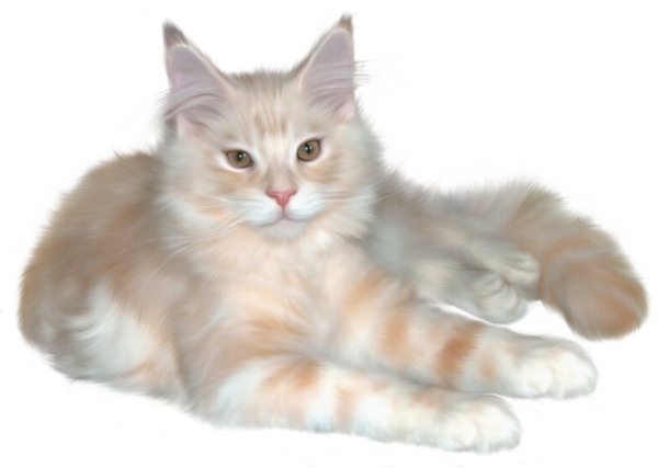 Real cat clipart transparent library Realistic Cat Clipart - Clipart Kid transparent library