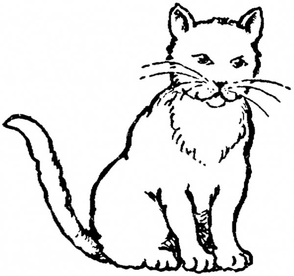 Real cat drawing clipart clip library download Cat Drawing | Free Download Clip Art | Free Clip Art | on Clipart ... clip library download