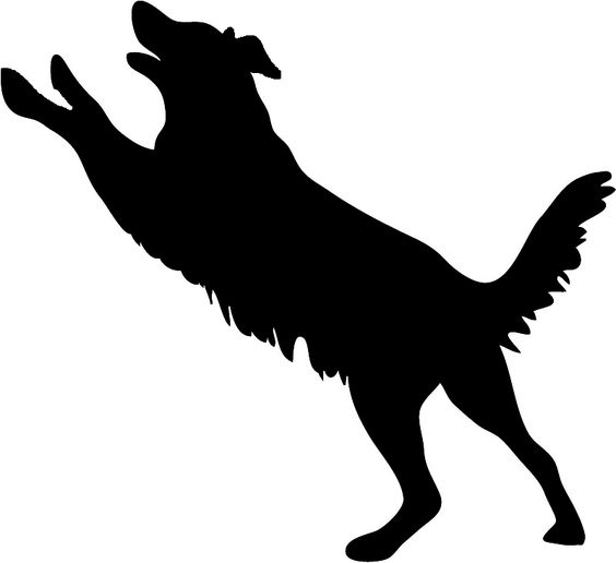 Real dog jumping clipart jpg black and white download Dog Silhouette Dog Jumping Jpg | Cricut | Pinterest | Poodles ... jpg black and white download