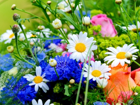 Real flower background images clip freeuse library Real flower background images - ClipartFest clip freeuse library