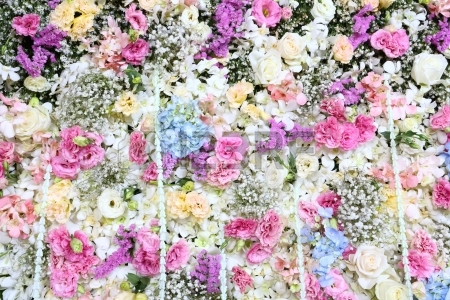 Real flower background images clipart stock Beautiful Real Flower Background For Wedding Backdrop Stock Photo ... clipart stock