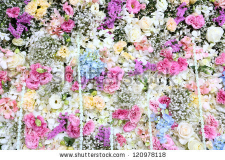 Real flower background images svg stock Beautiful Real Flower Background Wedding Backdrop Stock Photo ... svg stock