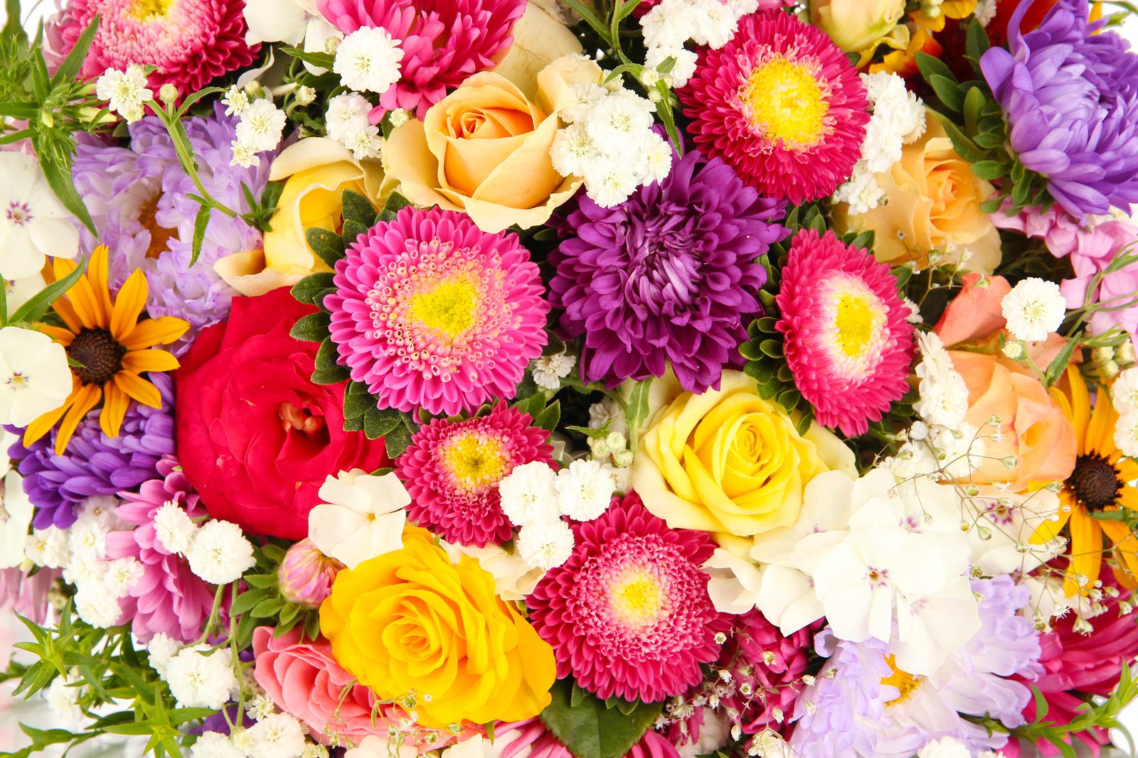 Real flower background images banner freeuse download real flowers background - The Best Flowers Ideas banner freeuse download