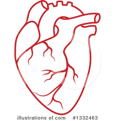 Real heart clipart clip royalty free Real human heart clipart - FamClipart clip royalty free
