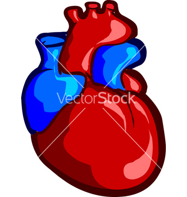 Real heart clipart clip art royalty free Real Heart Drawing | Clipart Panda - Free Clipart Images clip art royalty free