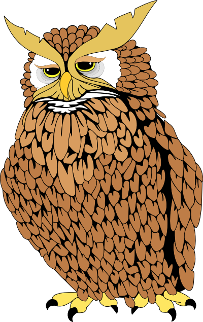 Real owl clipart clip freeuse library Real Owl Clipart clip freeuse library