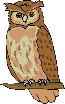 Real owl clipart svg stock Realistic owl clipart - ClipartFest svg stock