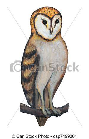 Real owl clipart royalty free Clipart barn owl - ClipartFox royalty free