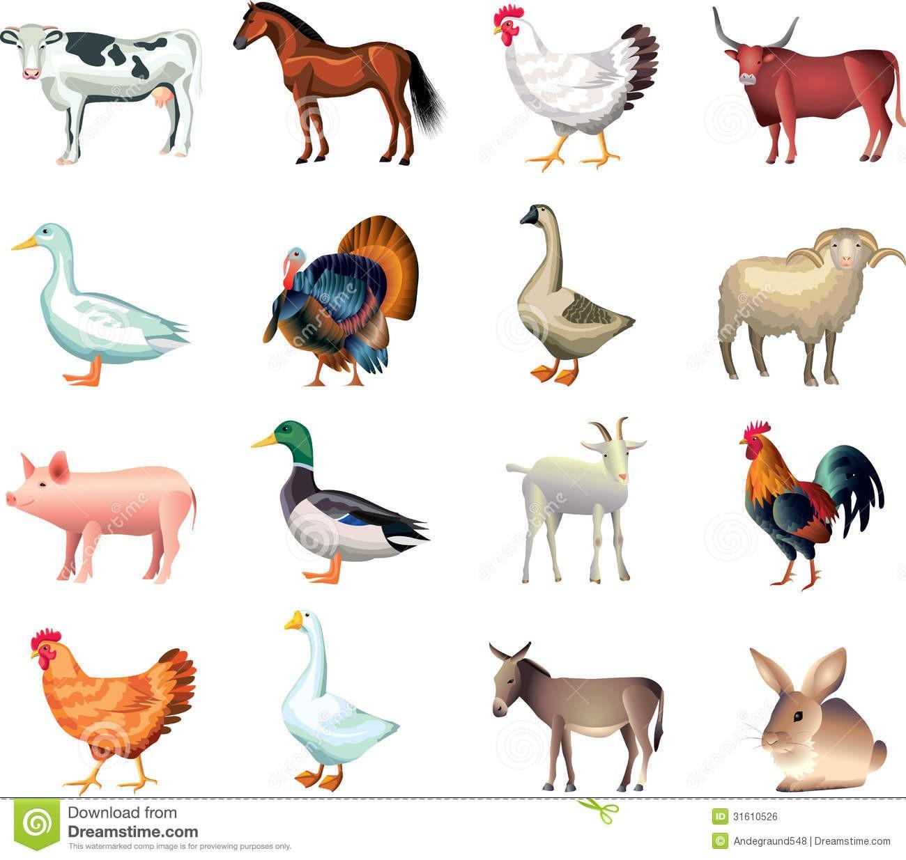 Realistic animal clipart clip art free In Farm Animals Clipart Realistic Animal 1   Clip Art clip art free