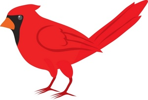 Realistic bird clipart side jpg stock Red Bird Clipart | Free download best Red Bird Clipart on ... jpg stock