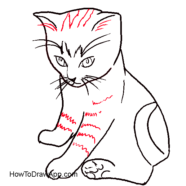 Realistic cat clipart png library library Step By Step Cat Drawing at GetDrawings.com | Free for personal use ... png library library