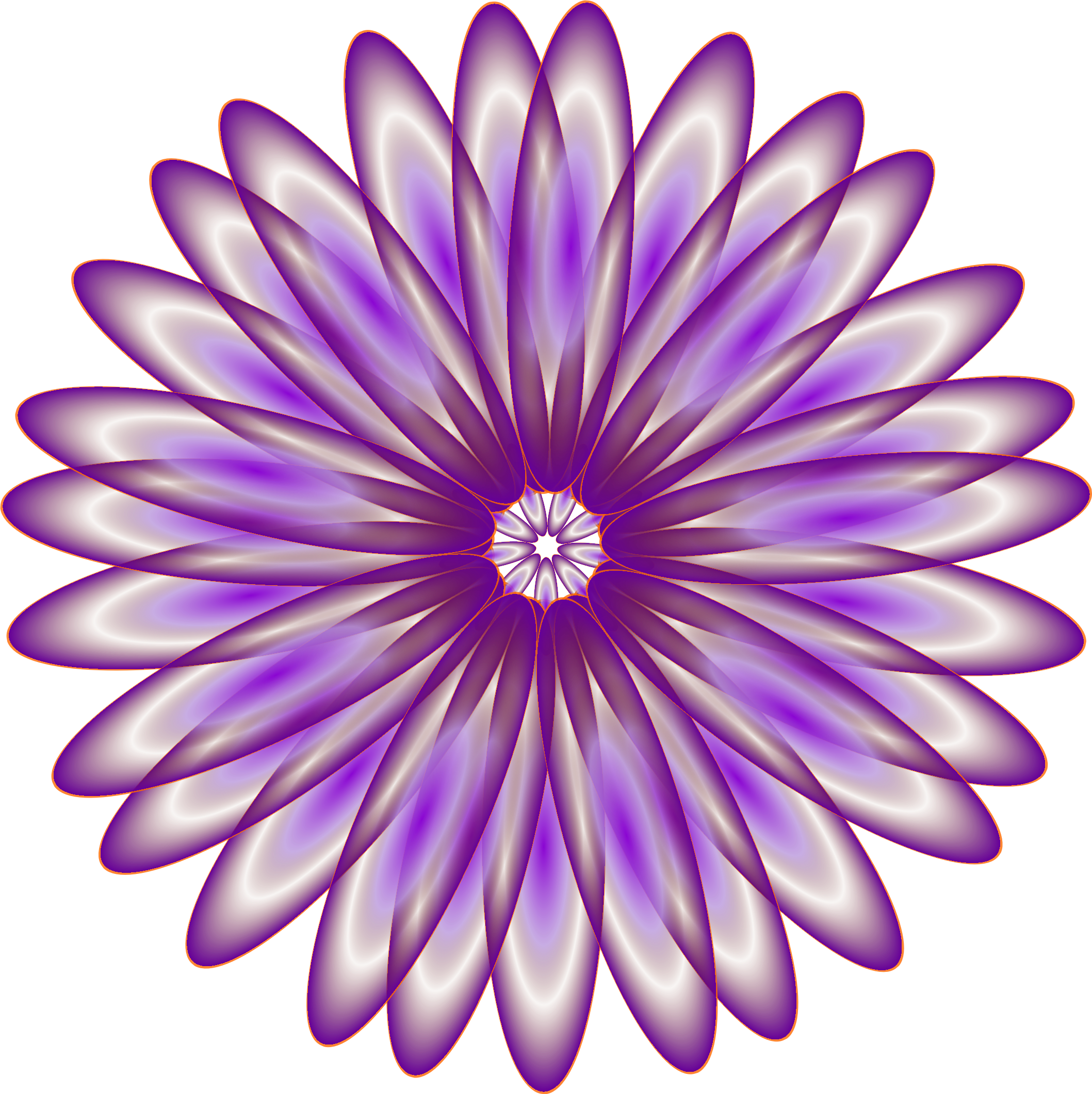 Realistic flower clipart vector download Clipart - Purple Daisy vector download