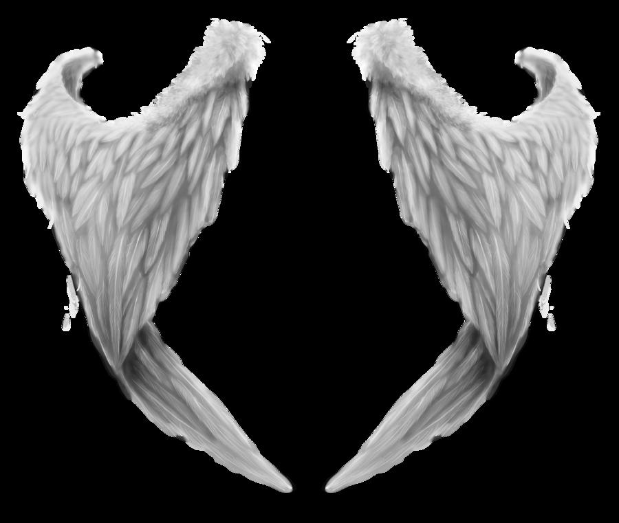 Wings PNG images free download, angel wings PNG jpg download