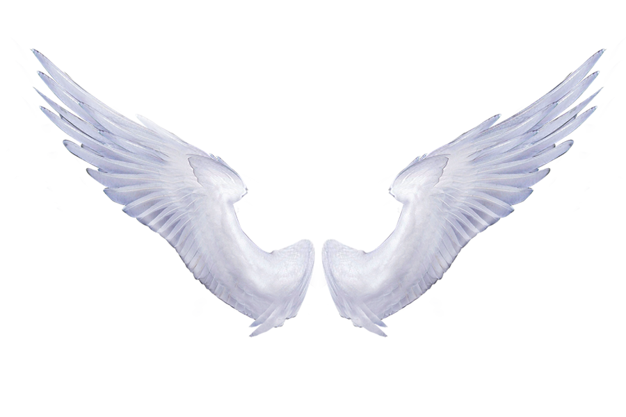 Free Realistic Angel Wings Png, Download Free Clip Art, Free ... png transparent library