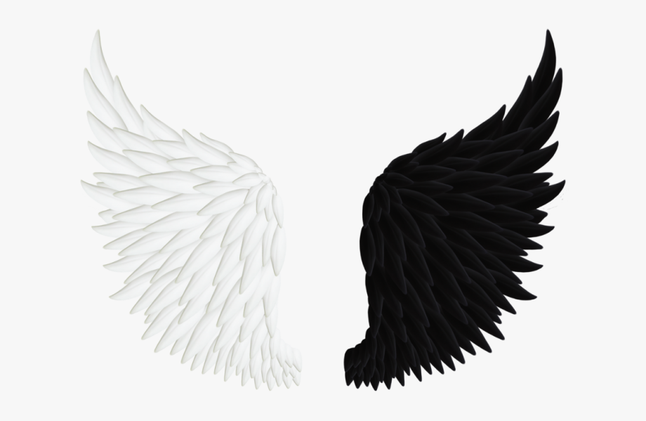 Realistic Angel Wings Png - Angel Wings Black And White ... image library stock