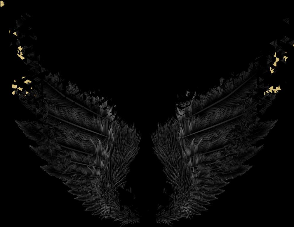 HD #wings #black #gold #dark #angel #fairytail - Black Wings ... banner royalty free library