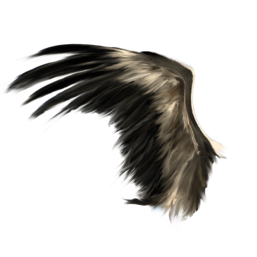 Realistic angel wings clipart images gallery for free ... jpg free library