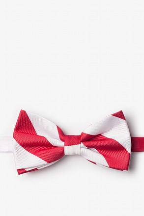 Pre-Tied Bow Ties for Men | Ties.com graphic royalty free library