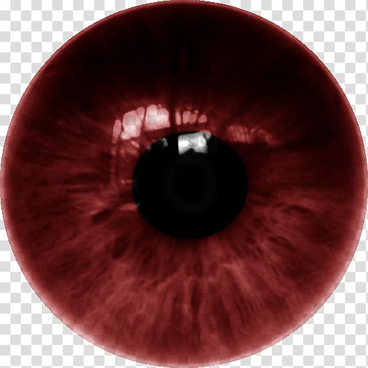 Red eye lens clipart vector Human eye Iris Lens Color, dente transparent background PNG ... vector