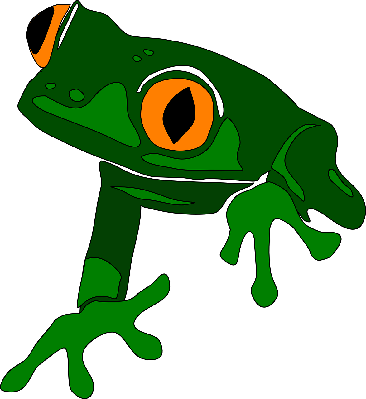 Red eyed tree frog clipart banner black and white library Frog Life Cycle Clipart at GetDrawings.com | Free for personal use ... banner black and white library