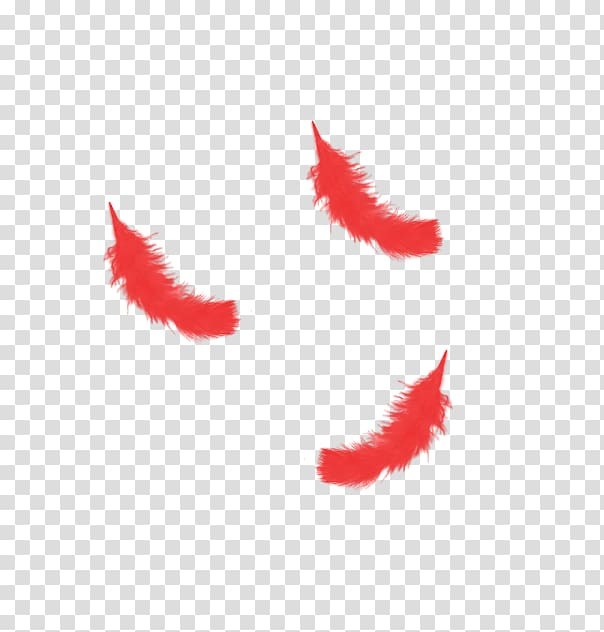 Red feather clipart clip free Red Feather transparent background PNG clipart | HiClipart clip free
