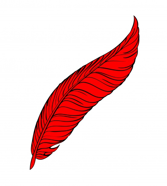 Red feather clipart jpg black and white library Red Feather Line Art Free Stock Photo - Public Domain Pictures jpg black and white library