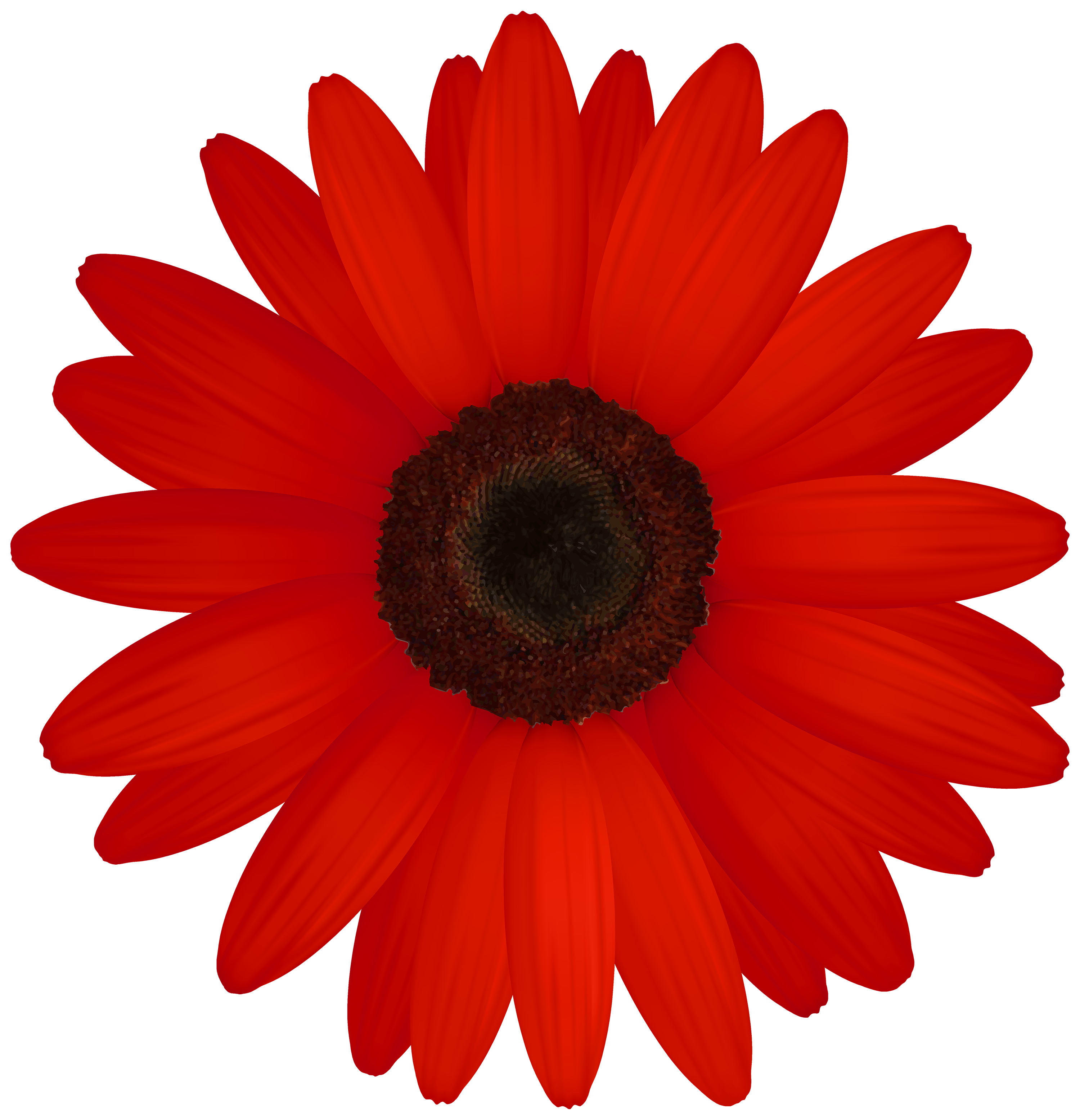 Red flower clipart graphic free Red Gerber PNG Clipart - Best WEB Clipart graphic free