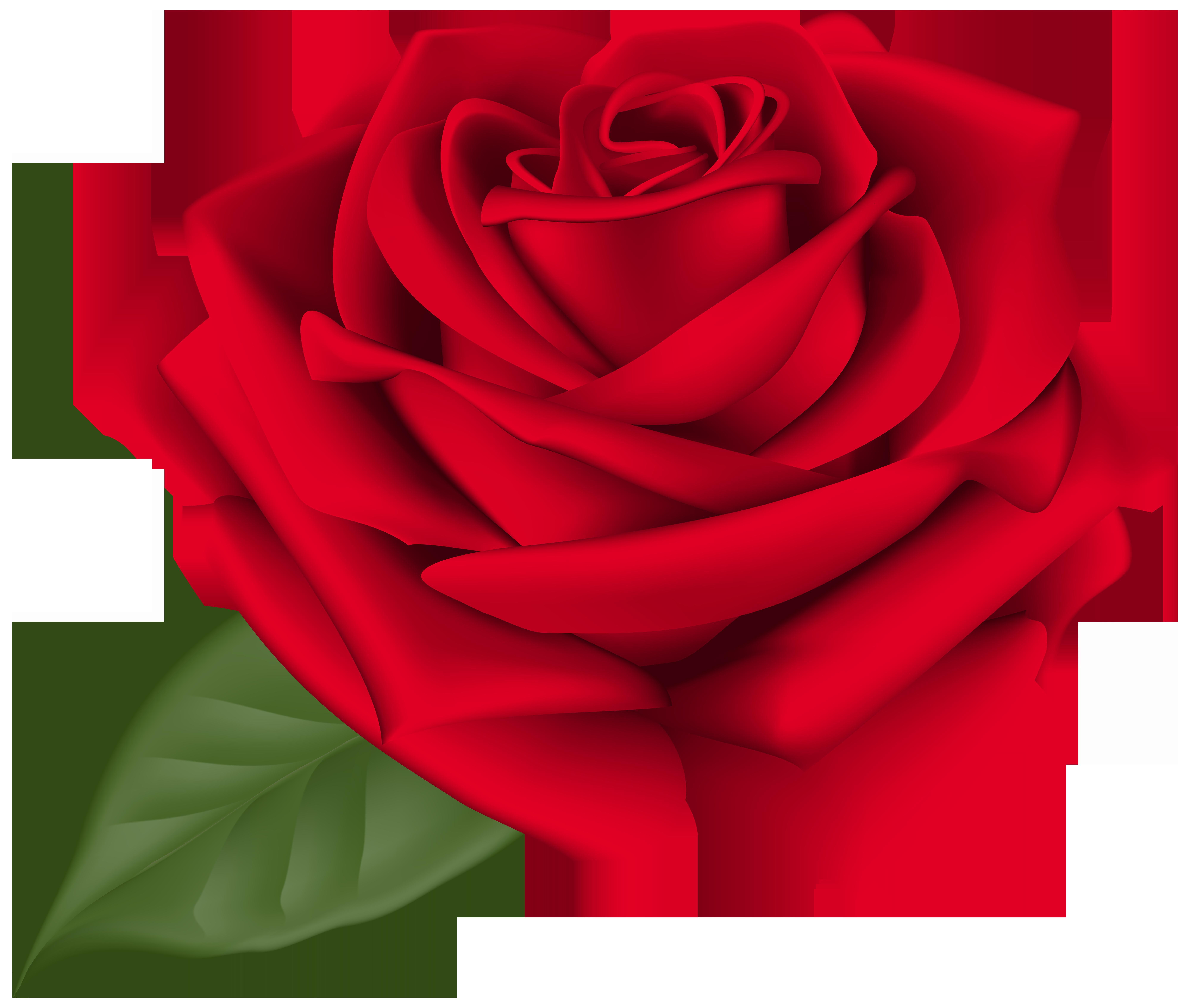 Red flower clipart no background image transparent stock Rose Red Transparent PNG Clip Art Image | Gallery Yopriceville ... image transparent stock