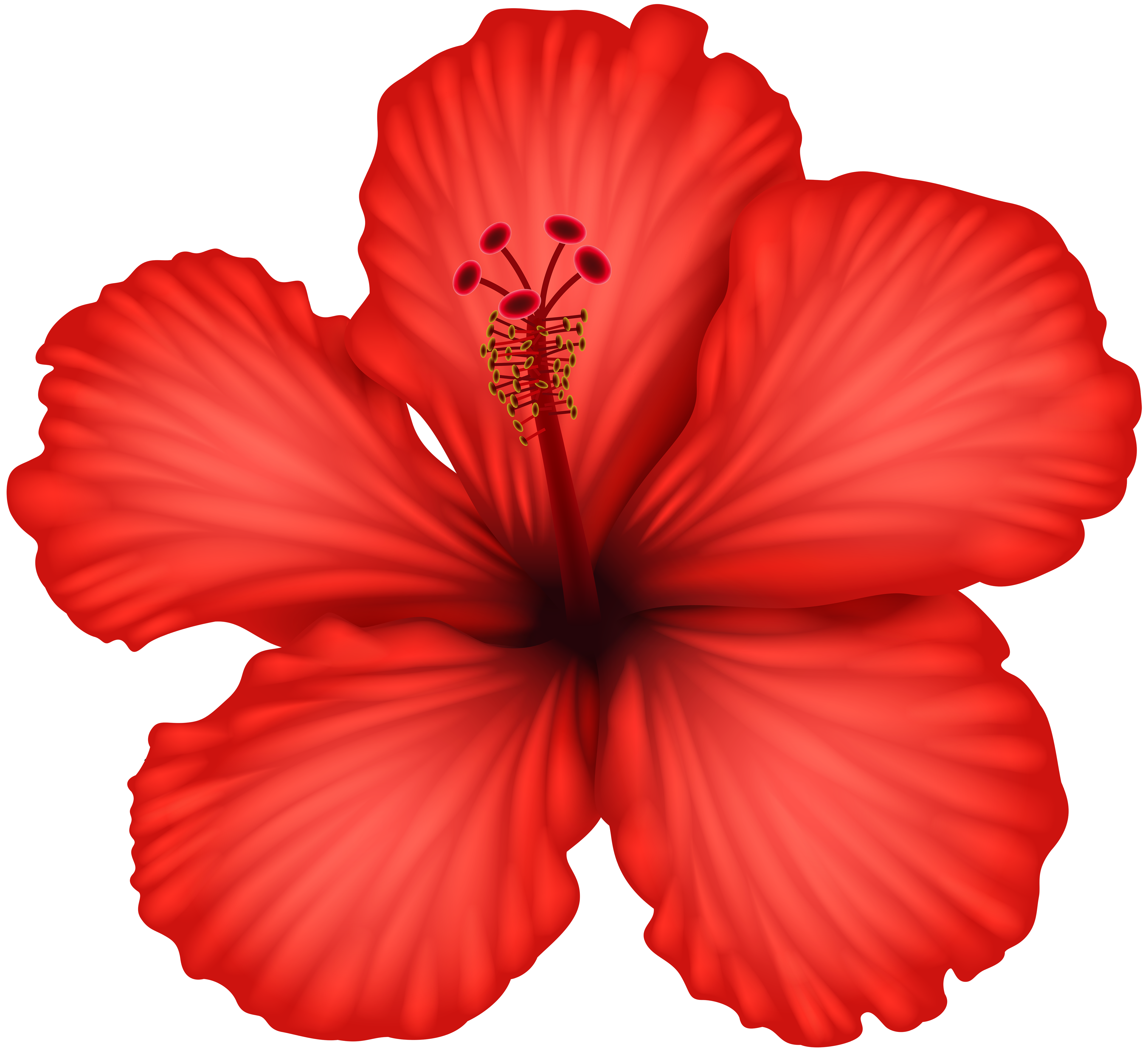 Red hawaiian flower clipart graphic free Red Hibiscus PNG Clip Art | Gallery Yopriceville - High-Quality ... graphic free