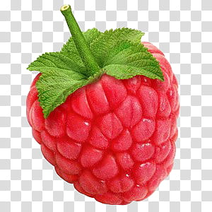 Red raspberry clipart image freeuse stock Be my love KIT, red raspberry transparent background PNG ... image freeuse stock