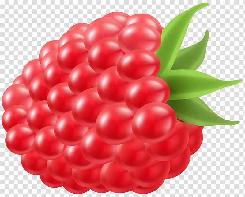 Red raspberry clipart graphic Raspberry illustration, Raspberry Frutti di bosco ... graphic
