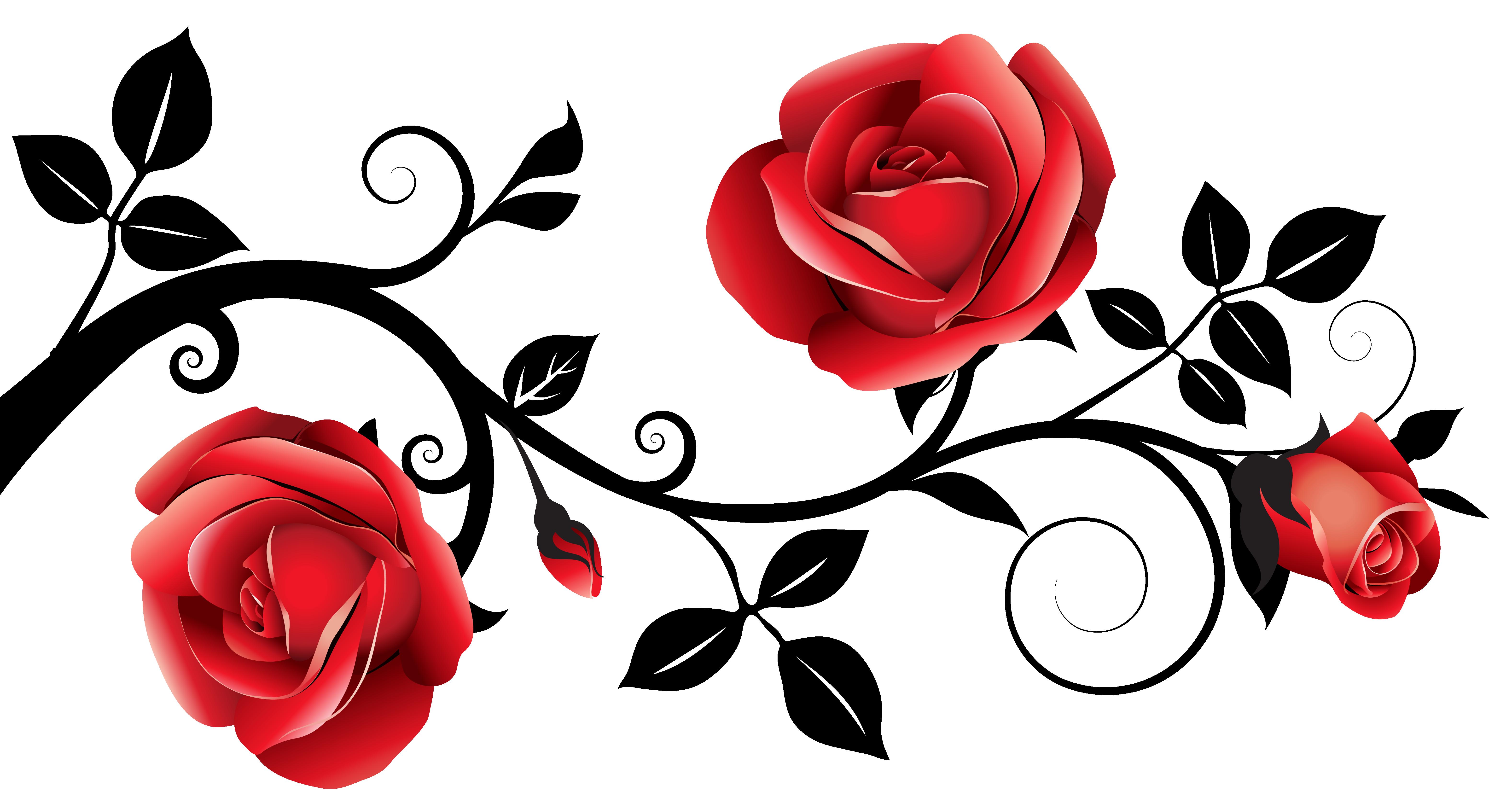 Pin by Prajesh Sharma on Girl | Rose vines, Rose vine ... vector stock