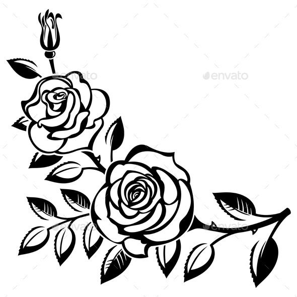 Branch of Roses (Vector EPS, AI Illustrator, CS, black and ... svg freeuse