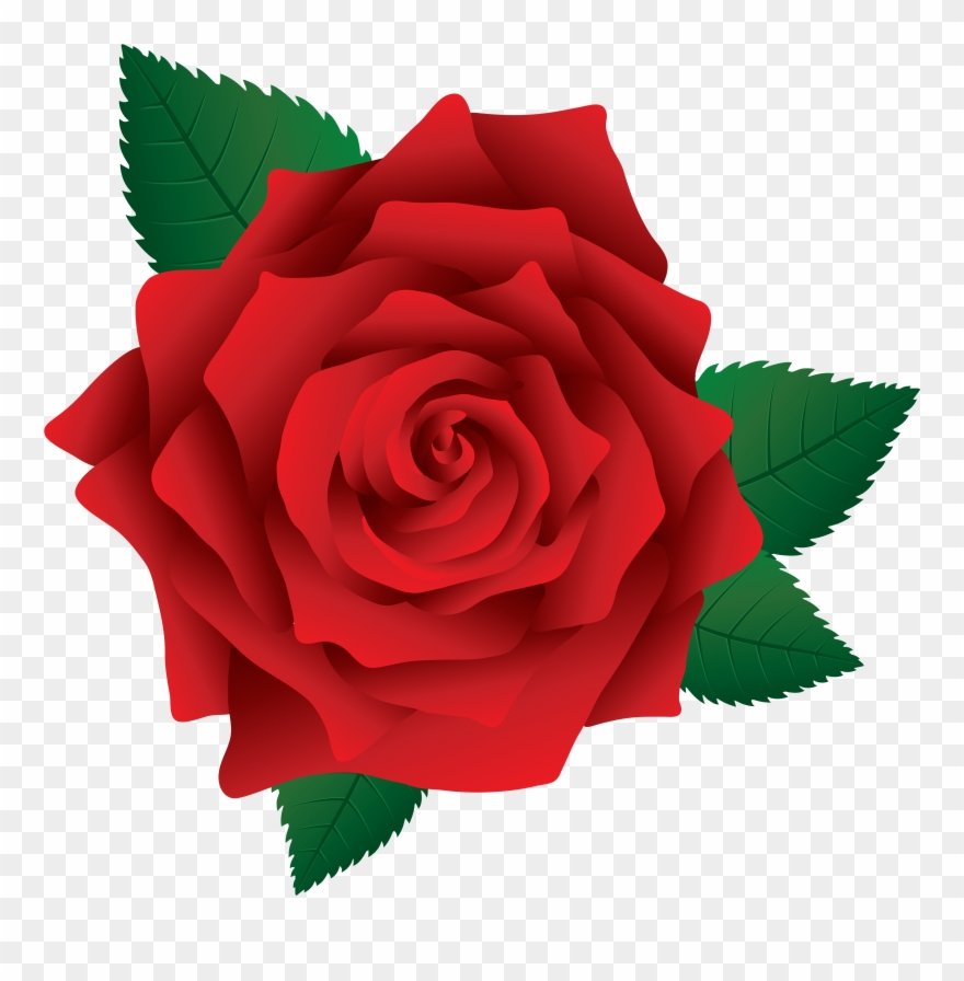 Red rose clipart image graphic download Red Rose Clipart - Rose Png Clip Art Transparent Png ... graphic download