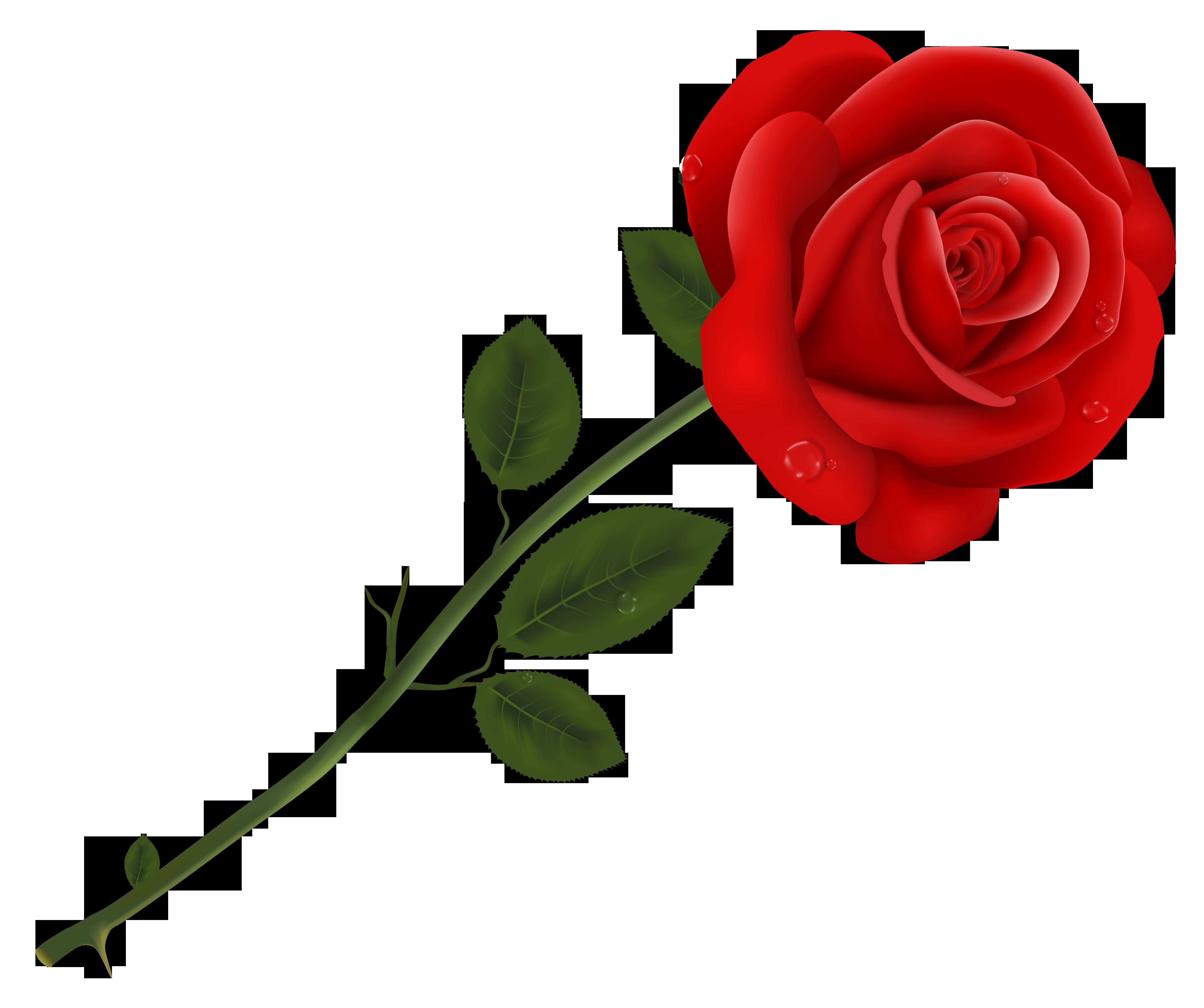 Pin by Ludmila Kolosovskaya on Flowers | Red rose flower ... svg freeuse