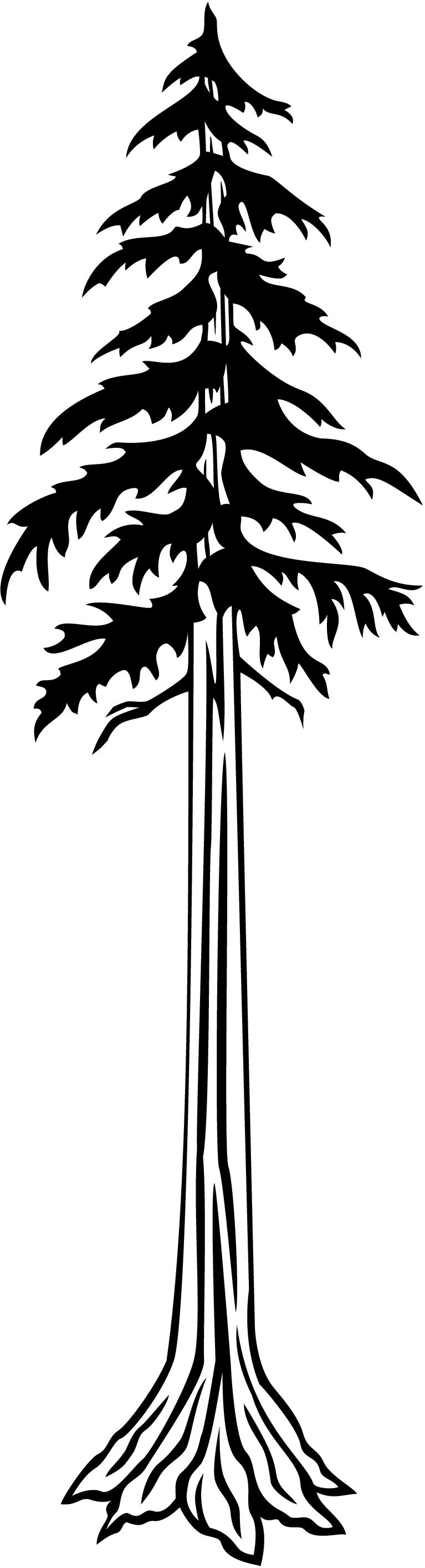 Free Redwood Tree Cliparts, Download Free Clip Art, Free ... clipart transparent