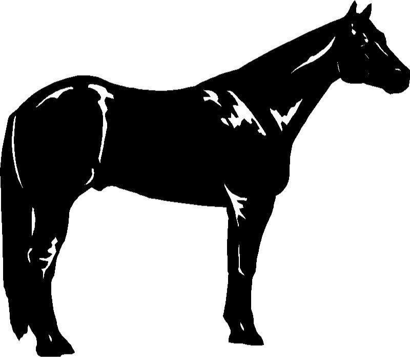 Reining horse silhouette clipart free download Free Quarter Horse Cliparts, Download Free Clip Art, Free ... free download