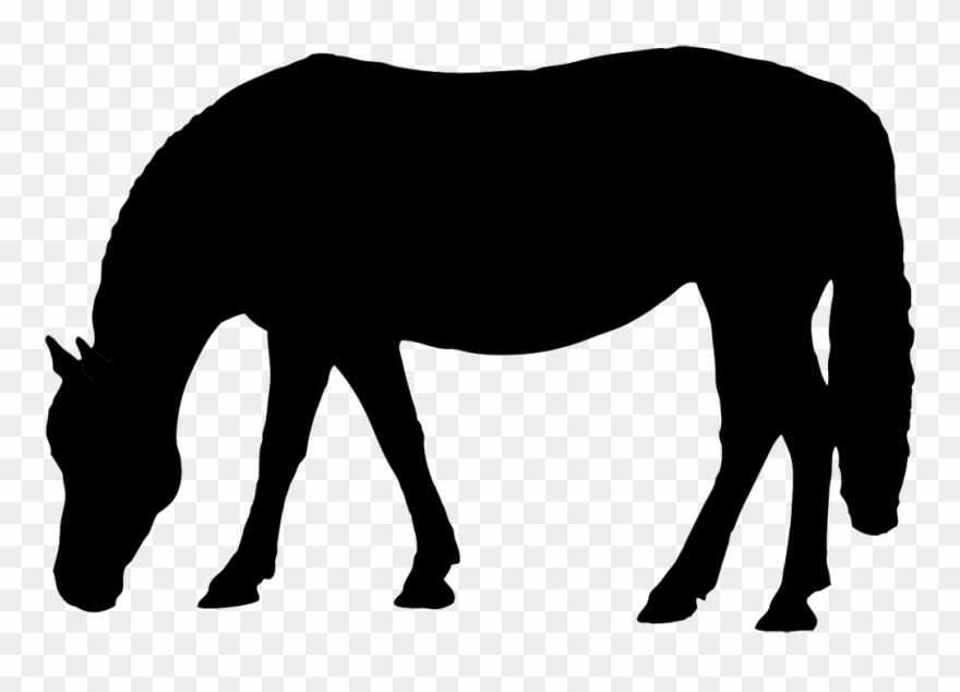 Reining horse silhouette clipart clip art royalty free download Silhouette - Horse Eating Silhouette Clip Art - Png Download ... clip art royalty free download